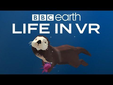 BBC Earth: Life in VR - California Coast | Launch Trailer |Google Daydream