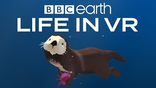BBC Earth: Life in VR - California Coast | Launch Trailer | Google Daydream