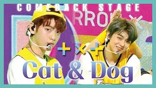 [HOT] TOMORROW X TOGETHER - Cat & Dog ,  투모로우바이투게더 - Cat & Dog  Show Music core 20190427