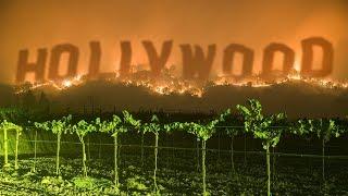 Protéjase de Hollywood