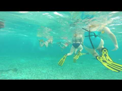 Snorkeling in Belize Cruise 2017 1080p