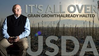 USDA SAYS IT'S ALL OVER | Grain Growth Season Halted Early/Mid October