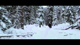 Сумерки. Сага. Рассвет: Часть 2 (The Twilight Saga: Breaking Dawn - Part 2) 2012 г.