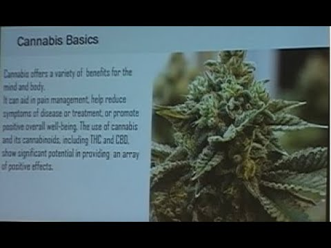 "Video: ""Legitimitized"" Cannabis Grows in Virginia 