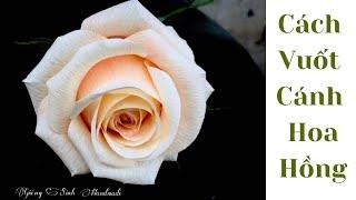 Hướng dẫn cách vuốt cánh hoa hồng bằng giấy