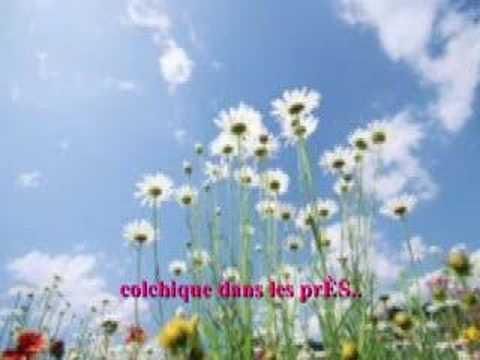 Feuilles d 39 automne doovi - Colchique dans les pres ...
