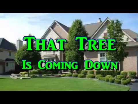 Homeowners Association - That Tree Is Coming Down