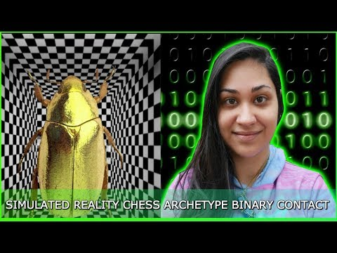 Simulated Reality, Chess Program/Archetype, Binary Code Contact