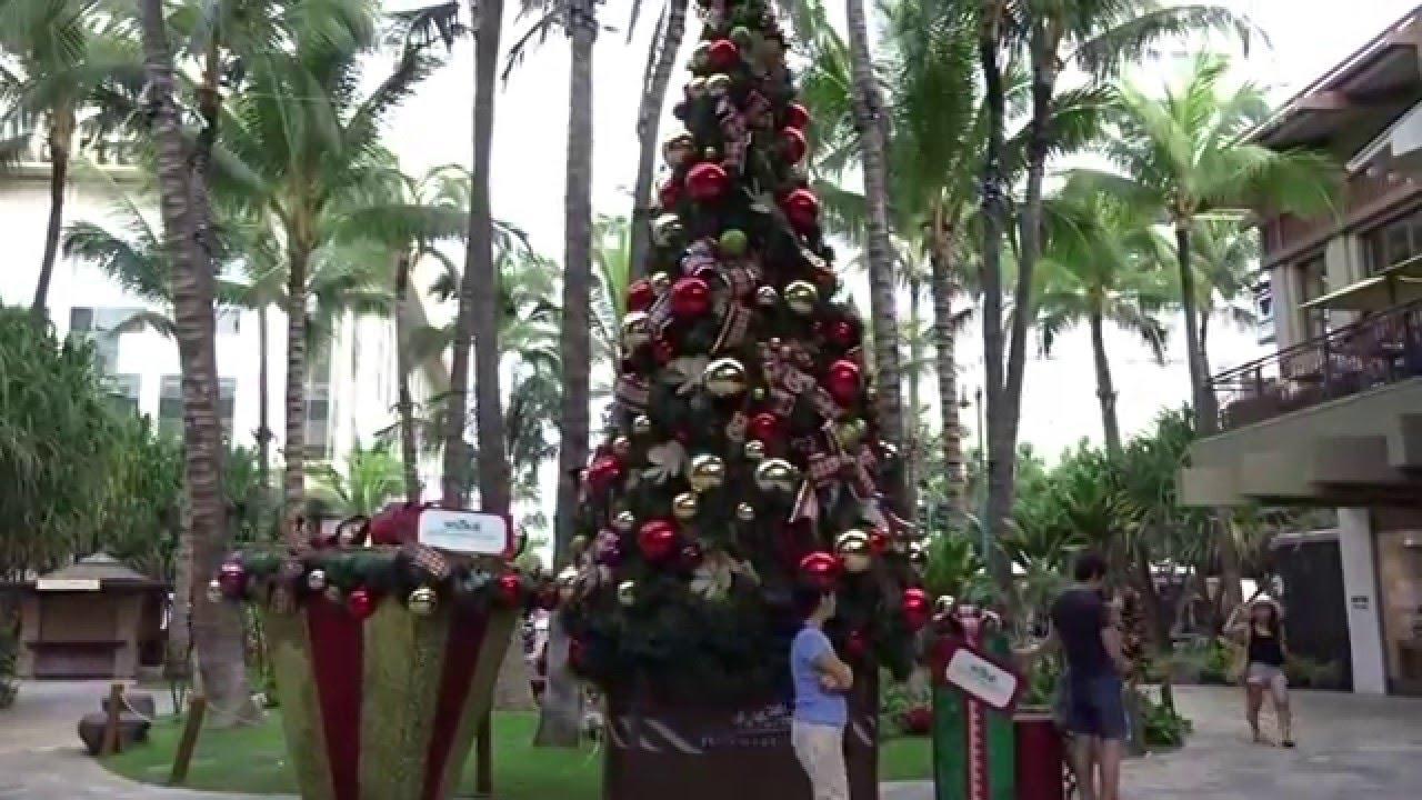 Christmas Illumination Decoration Light Ornament Royal Hawaiian