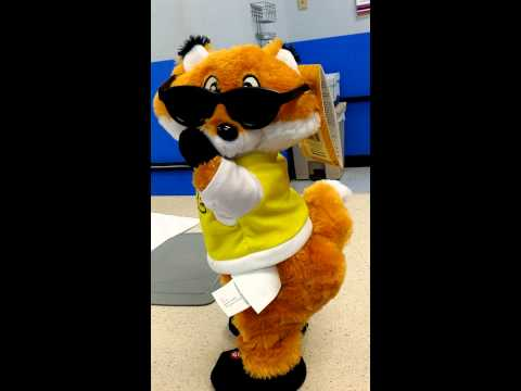 Fox stuffed animal dancing to fireball by pitbull