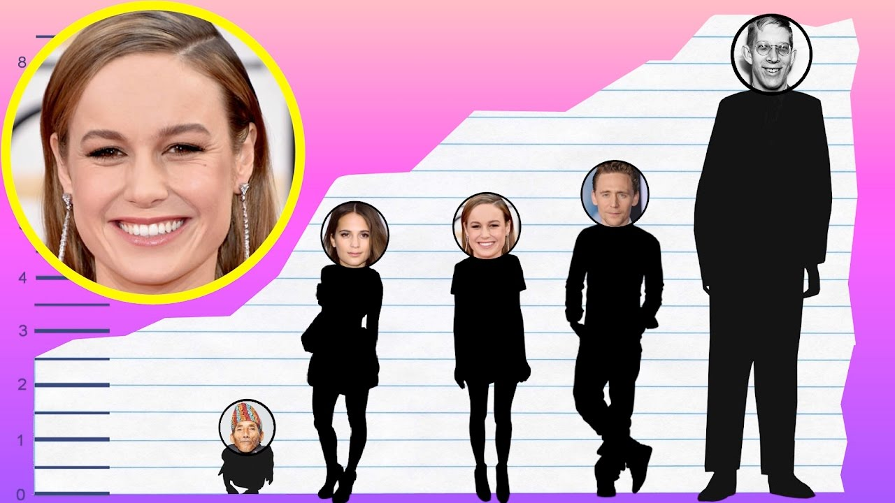 How Tall Is Brie Larson? - Height Comparison! - YouTube