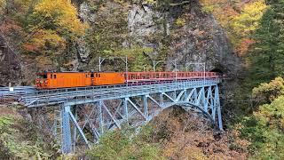 黒部峡谷鉄道トロッコ列車(クロテツ) 紅葉の後曳橋を渡るシーン 4K撮影