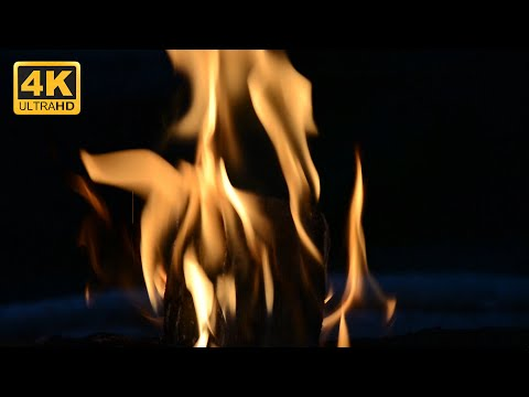Fire Stock Footage - Camp Fireplace Video Animation (4K)