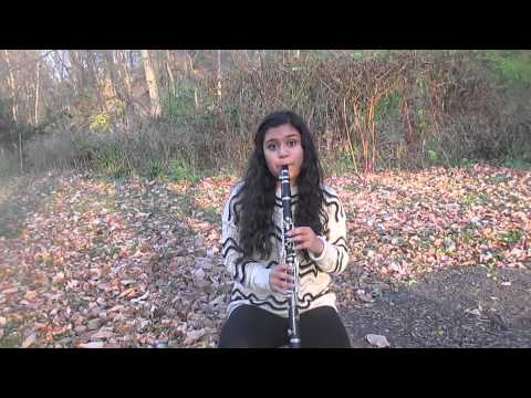 Shake It Off-Taylor Swift (Clarinet Cover)