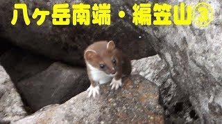 東京近郊の日帰り登山を、全行程をビデオ撮影しています。本館では、地図等の補足や、ジャンル別の内容が見られます。 本館→. http://xn--y8jtaf8b0e7ewcb.net/