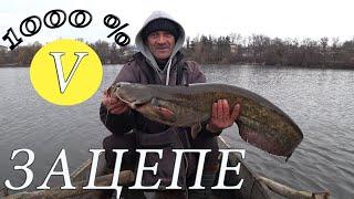 Рыбалка в Украине Сом не спит Это был глухой зацеп