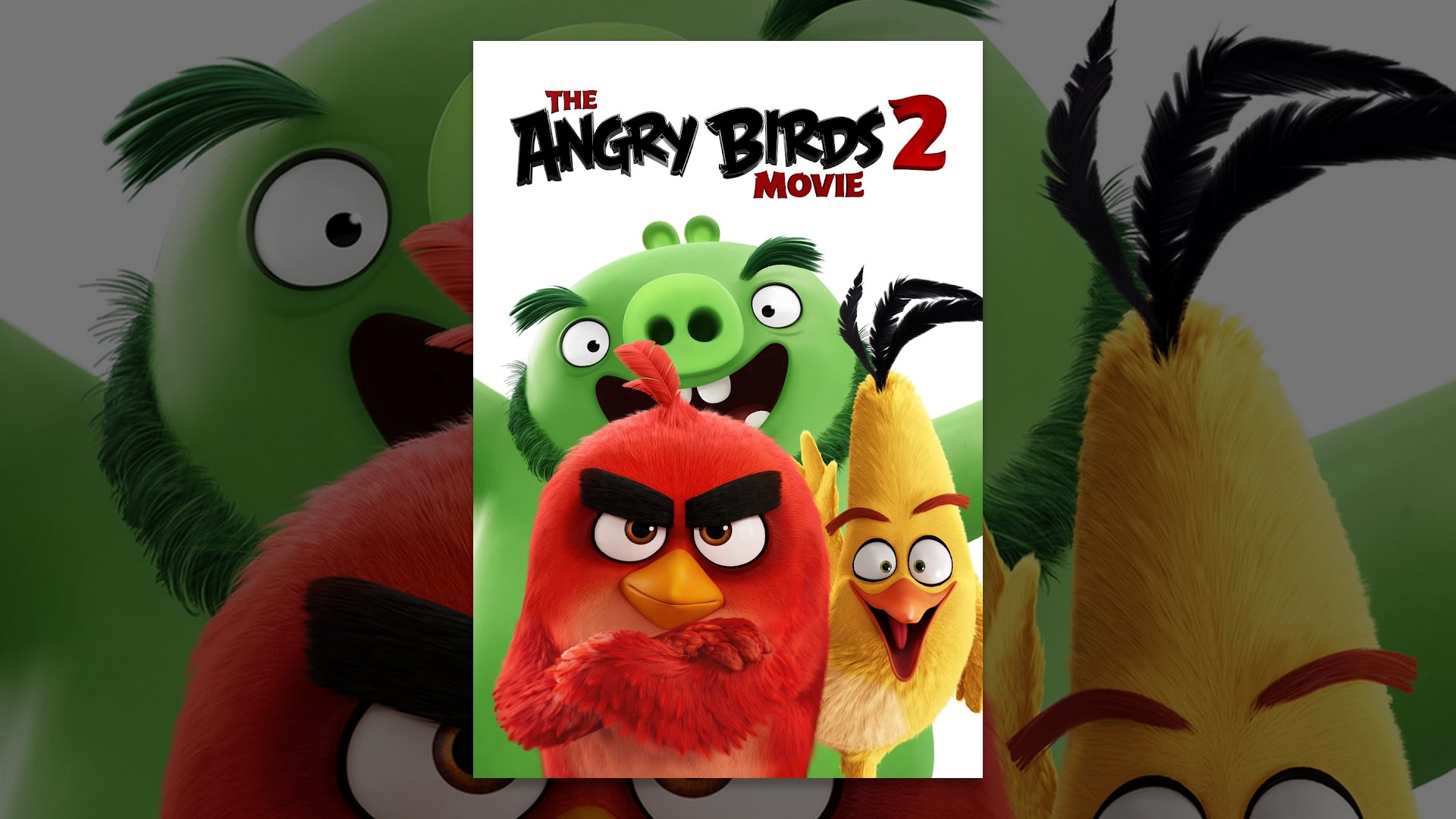 Movie Pooper For The Film The Angry Birds Movie 2