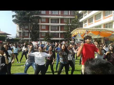 St. Xavier's College mitighar flash mob 2073/2016 part 1