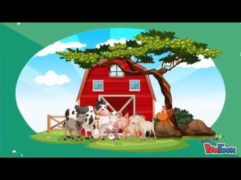 AKACIN-NEW PRODUCT!!! ASIA ANIMAL PHARMACEUTICAL CO