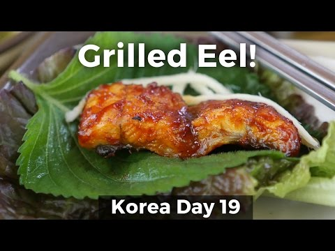 Insanely Delicious Grilled Eel in South Korea! (Day 19)