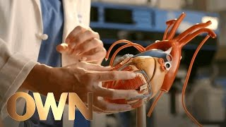 How Love Affects Us Physically: A Heart Surgeon Weighs In | SoulPancake | Oprah Winfrey Network