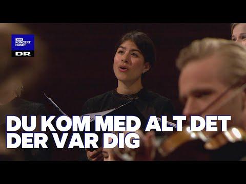 Din Danske Sang #4: Du kom med alt det der var dig - fællessang