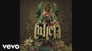 Calle 13 - La Fokin Moda (Cover Audio Video)