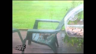 Cutewinfail: Squirrel Has Hops