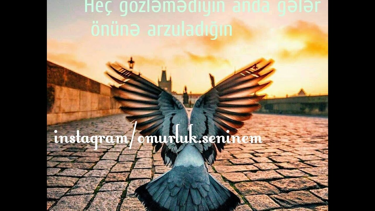 Maraqli Ve Menali Yazili Sekiller 2017 Malik Roman Unutdur Youtube