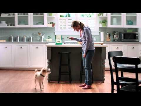 greenies-toothbrush-cookie-jar-commercial
