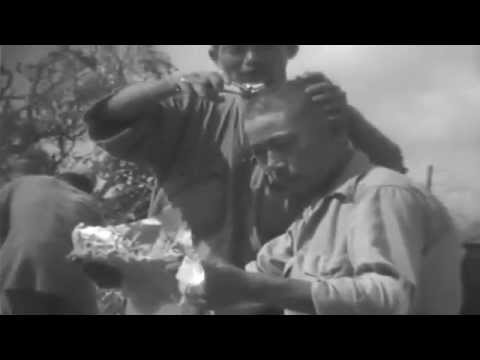 Mass Surrender Of Japanese Troops, Okinawa, 06/25/1945 - 07/03/1945 (full)