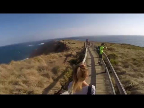 Phillip Island Day Tour