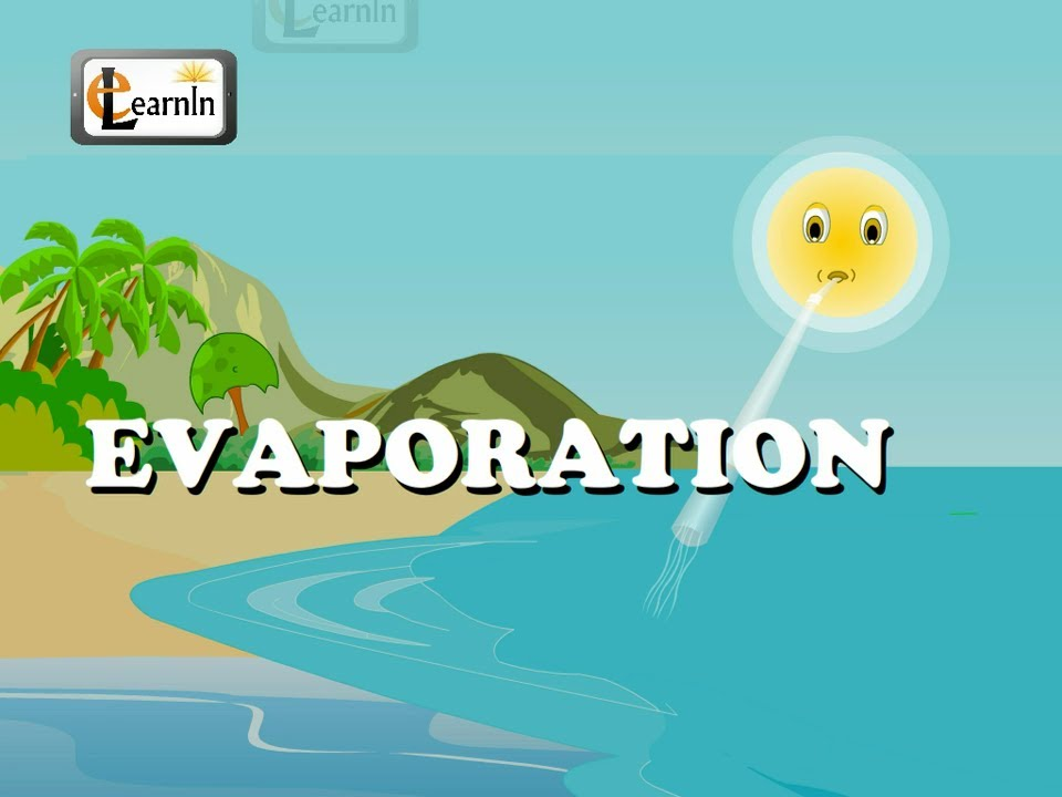 Evaporation - Elementary Science - YouTube