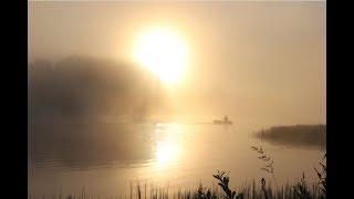 Карпфишинг. Ловля карпа на диком водоеме. Экстремальное вываживание