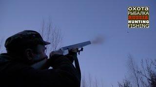 Охота на вальдшнепа. Красивые выстрелы.