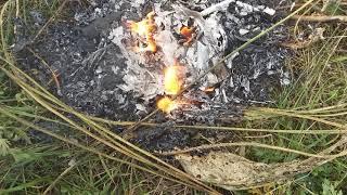 """Сожжение """"Не родись красивой"""". Конец истории."""