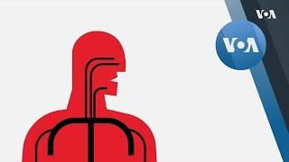 Опасно ли чихать?