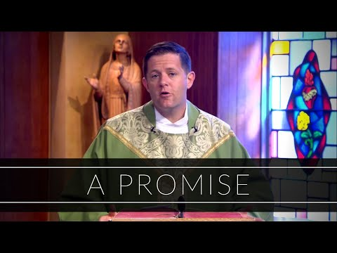 A Promise | Homily: Father Eric Cadin