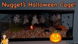 Decorating Nugget's Cage for Halloween! Super Cute Cage Transformation | Kelli Maple