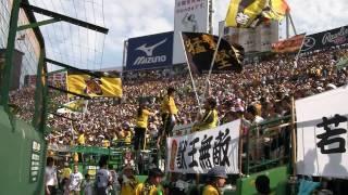 2010.5.9 阪神×広島 甲子園球場ライトスタンド.