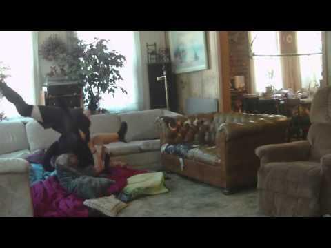 PCW:Tommy Mason vs Twelve(20 Min Time Limit)highlights