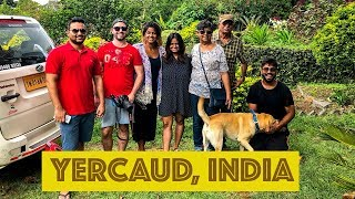 CARLTON HOUSE- 110 YEAR OLD HOMESTAY IN THE INDIAN HILLS || YERCAUD, INDIA VLOG