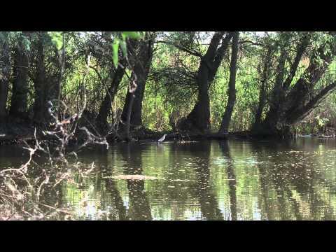 Delta Dunarii- paradisul