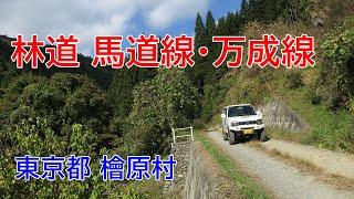東京林道 Vol.55 馬道線・万成線(檜原村) thumbnail