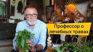 Знахарь!Александр Ручкин/доктор медицинских наук, профессор о лечении травами!