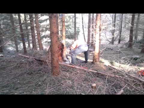 Lars på Nødebo Skovskole