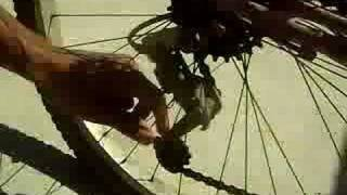 Bike Zika