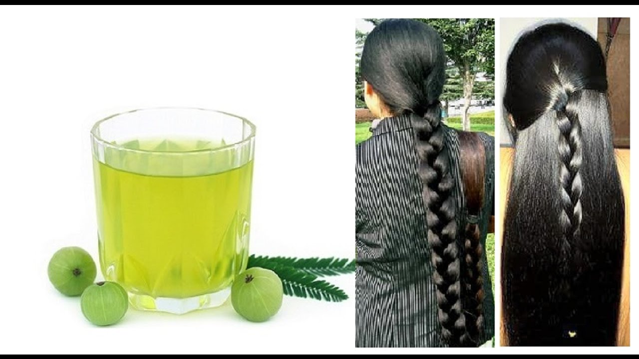 How To Make Amla Hair Oil At Home Grow Your Hair Longer