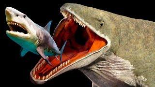 Criaturas Mais Assustadoras do Que o Megalodonte  Que Vivem na Fossa das Marianas