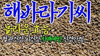 ☞해바라기씨의 엄청난 효능【위를튼튼,심신안정,수족냉증개…